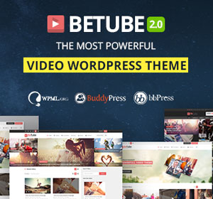 WordPress Video Robot - The Ultimate Video Importer - 25